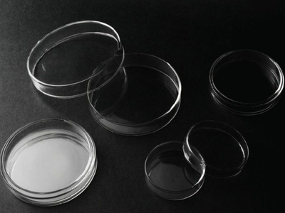 Petri Dishes Glass